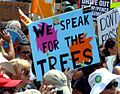 Climate March 0777 Lorax (34371727026).jpg
