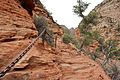 Climbing up to Angels Landing (Zion National Park) (3444009848).jpg