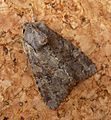 Clouded Drab. Orthosia incerta. - Flickr - gailhampshire (2).jpg