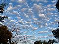 Clouds 10-14-10 8AM to N (5083090784).jpg