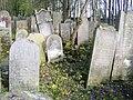 Cmentarz żydowski w Szydłowcu 16.JPG
