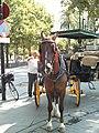 Coche de caballos 01.jpg