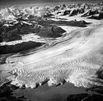Columbia Glacier, Calving Terminus and Distributaries, Terentiev Lake, August 12, 1961 (GLACIERS 1091).jpg