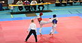CombatTaekwondo.jpg