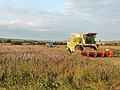Combine harvester near Weston Farm - geograph.org.uk - 1621205.jpg