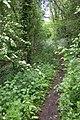 Course of Banbury to Cheltenham Railway - geograph.org.uk - 177341.jpg
