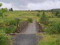 Cranecleugh footbridge - geograph.org.uk - 1362079.jpg