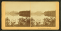 Crawford House, White Mts, from Robert N. Dennis collection of stereoscopic views.png