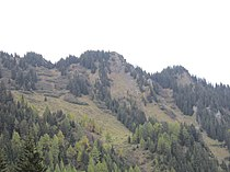 Crest Ault from Alp Sut.jpg
