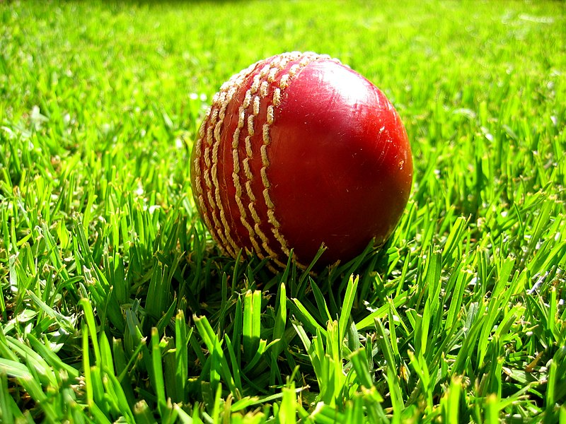चित्र:Cricket ball on grass.jpg