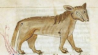 Crocotta mythical dog-wolf of India or Ethiopia