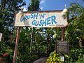 Crush 'n' Gusher (34144801952).jpg