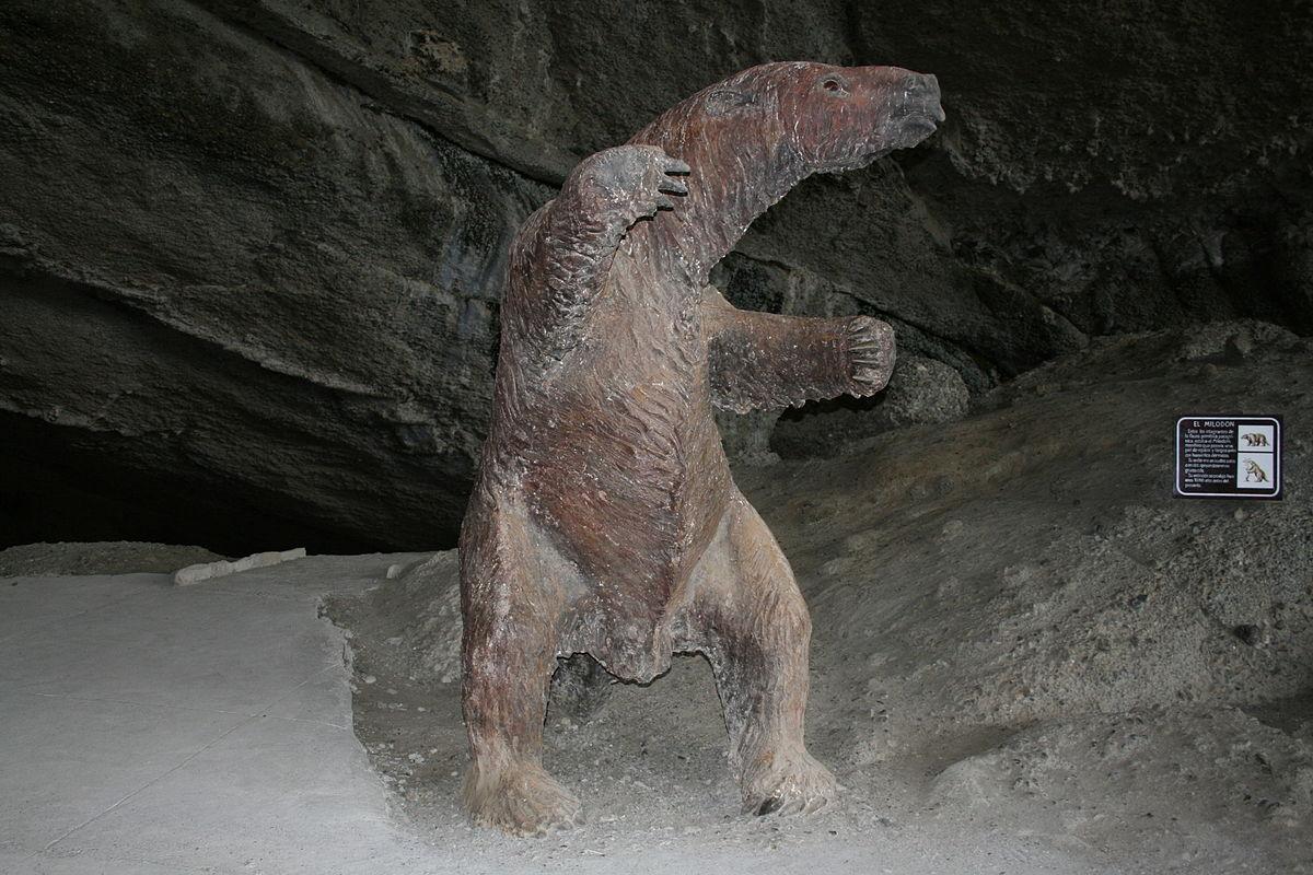 Mylodon darwini - Wikipedia, la enciclopedia libre