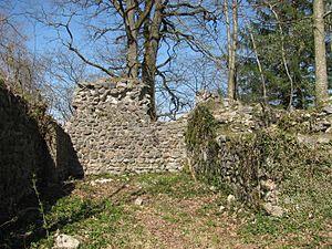 D-BW-Neukirch - Ruine Ebersberg.JPG