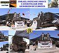 D9R-60-for-Israel.jpg