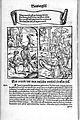 De Bambergische Halsgerichtsordnung (1531) 50.jpg