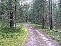 Degučių sen., Lithuania - panoramio (172).jpg