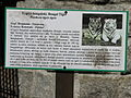 Descriptions of animals in the Silesian Zoological Garden n 03.JPG