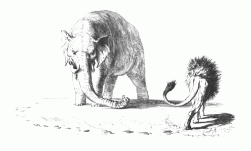 The Prussian lion circling the Austrian elephant. Adolph Menzel, 1846 Deutscher-Dualismus.png
