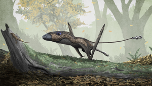 Parapsicephalus - Restoration of Dimorphodon macronyx, considered a close relative of Parapsicephalus by some authors