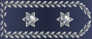 Chief superintendent - Image: Distintivo Superintendente Chefe PSP