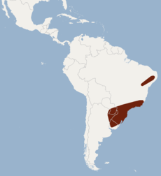 Distribution of Myotis ruber.png