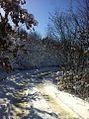 Dite dimri ne fshatin Kosturr,Has.jpg