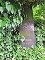Dolní Žandov-hřbitov 07.jpg
