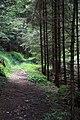 Dolomiti 07-2010 - panoramio (6).jpg