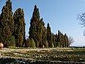Domaine de la Reine Marie de Roumanie, Bulgarie, Balchik, 4.04.2010 - panoramio - anagh (38).jpg