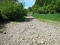 Donauversickerung bei Immendingen - panoramio (4).jpg