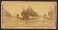 Down Canal, from Chestnut Street, by Conant Bros..png
