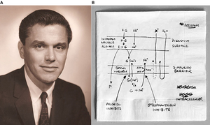 Symporter - Robert K. Crane and his sketch of the sodium-glucose symporter