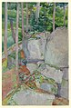 Drawing, Rocks and Trees, 1905 (CH 18478183).jpg