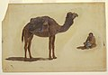 Drawing, Study of a dromedary, 1868 (CH 18201403-2).jpg