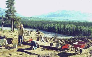 National Register of Historic Places listings in Denali Borough, Alaska - Image: Dry Creek Site (20537070012)