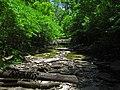 Dry Stream - panoramio.jpg