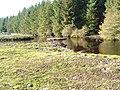 Duck Pond on Dell Estate - geograph.org.uk - 912702.jpg