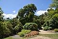 Dunedin Botanic Garden 11.jpg