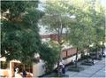 Edificio B psicologia 2.png