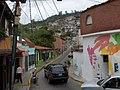 El Hatillo street.jpg