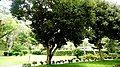 El Salvador - San Martin, Club Salvadoreno Corinto - panoramio (11).jpg