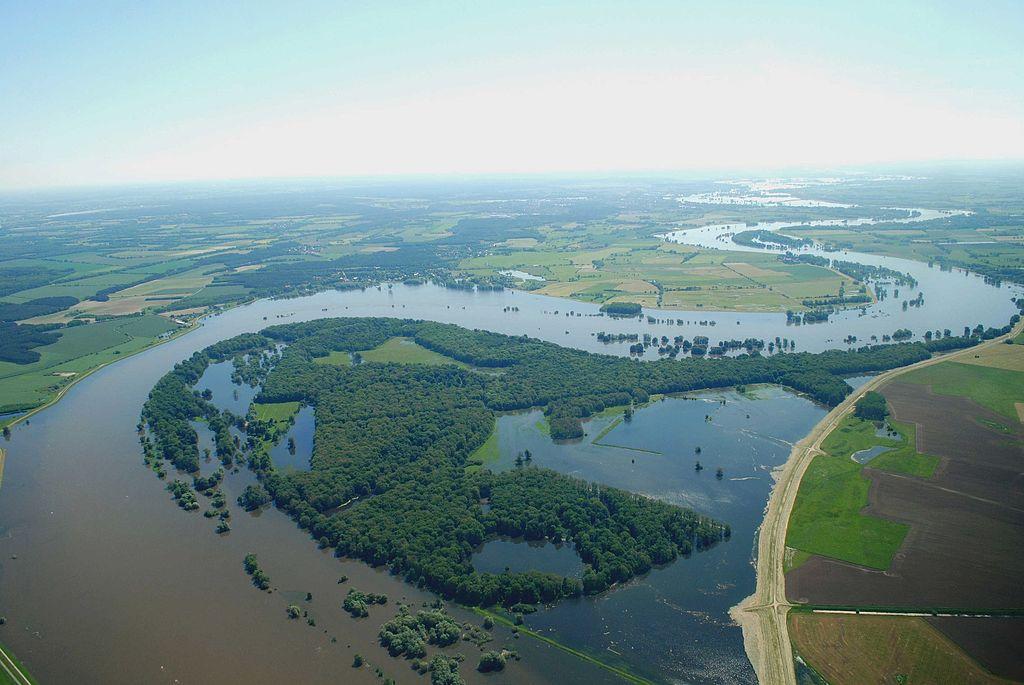 Elbe bei Hochwassser im UNESCO-Biosphärenreservat Flusslandschaft Elbe (Brandenburg)