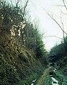 Erosie in holle weg - 362878 - onroerenderfgoed.jpg