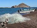 Estuary Scene - Mulege - Baja California Sur - Mexico - 02 (23643542419).jpg