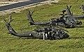 Exercise Steadfast Javelin II 140907-A-EM105-072 (cropped).jpg