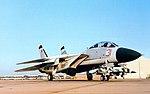 F-14A Tomcat of VF-126 c1993.jpg
