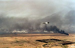 F-14A VF-84 over burning Kuwaiti oil wells 1991.JPEG