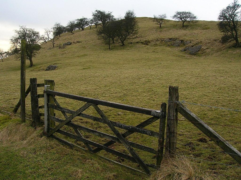 File farm gate near dinkling green for Single wooden driveway gates