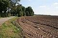 Farmland near Christie House - geograph.org.uk - 536547.jpg